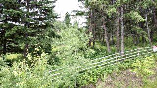 Photo 12: 437 WOODLAND Drive in Williams Lake: Williams Lake - City Land for sale (Williams Lake (Zone 27))  : MLS®# R2475217