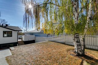 Photo 41: 3512 Brenner Drive NW in Calgary: Brentwood Detached for sale : MLS®# A1154029