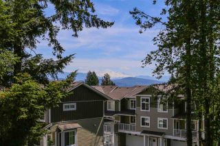 Photo 19: 8060 BLUEBELL Street in Mission: Mission BC House for sale : MLS®# R2376740