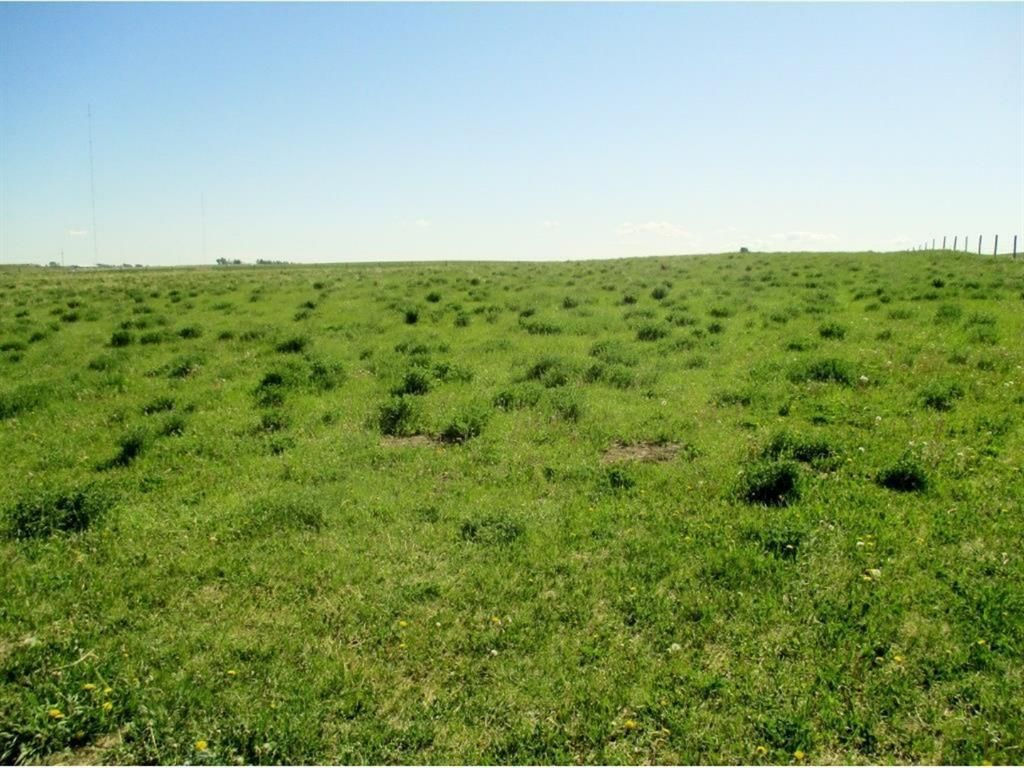 Main Photo: Rural Rocky View County in Rural Rocky View County: Rural Rocky View MD Residential Land for sale : MLS®# A1143959