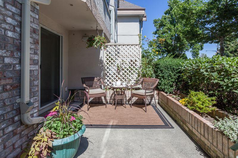 "Photo 1: Photos: 113 7171 121 Street in Surrey: West Newton Condo for sale in ""Highlands"" : MLS®# R2102553"