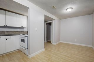 Photo 19: 4115 DOVERBROOK Road SE in Calgary: Dover Detached for sale : MLS®# C4295946