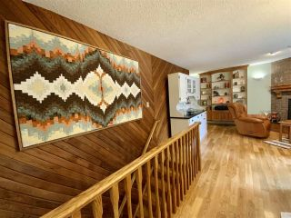 Photo 21: 471028 RGE RD 241: Rural Wetaskiwin County House for sale : MLS®# E4233950