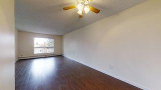 Photo 17: 212 2624 MILL WOODS Road E in Edmonton: Zone 29 Condo for sale : MLS®# E4263901
