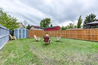 Photo 36: 3613 44 Avenue in Edmonton: Zone 29 House for sale : MLS®# E4246393