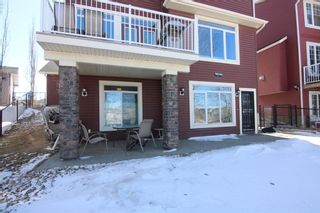 Photo 36:  in Calgary: Royal Oak Detached for sale : MLS®# A1087118