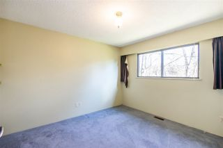 Photo 15: 1266 SPRINGER Avenue in Burnaby: Brentwood Park House for sale (Burnaby North)  : MLS®# R2535603