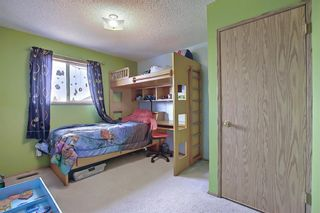 Photo 22: 23 Applecrest Court SE in Calgary: Applewood Park Detached for sale : MLS®# A1079523