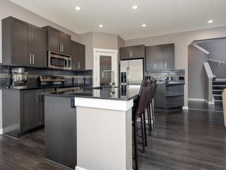 Photo 12: 155 Skyview Shores Crescent NE in Calgary: Skyview Ranch Detached for sale : MLS®# A1110098