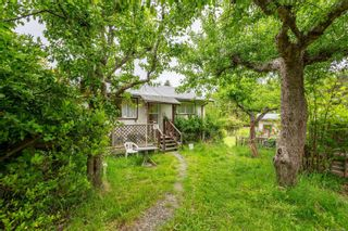 Photo 6: 815 Homewood Rd in : CR Campbell River Central House for sale (Campbell River)  : MLS®# 876600