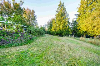 Photo 18: 31050 HARRIS Road in Abbotsford: Bradner House for sale : MLS®# R2505223