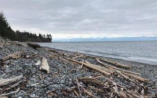 Photo 3: 7117 West Coast Rd in Sooke: Sk West Coast Rd House for sale : MLS®# 782099