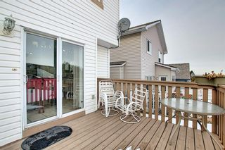 Photo 12: 144 Edgebrook Park NW in Calgary: Edgemont Detached for sale : MLS®# A1066773