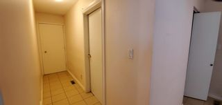 Photo 20: 239 HUMBERSTONE Road in Edmonton: Zone 35 House for sale : MLS®# E4262949