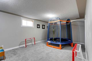Photo 20: 266 Banister Drive: Okotoks Residential for sale : MLS®# A1070083