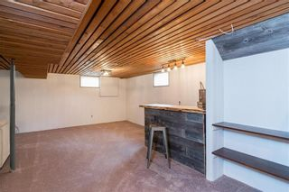 Photo 31: 131 Hillview Avenue in East St Paul: Birds Hill Town Residential for sale (3P)  : MLS®# 202110748