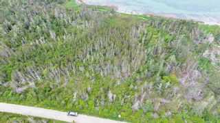 Photo 8: 618 Black Point Road in Ingomar: 407-Shelburne County Vacant Land for sale (South Shore)  : MLS®# 202114453
