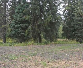 Photo 4: LOT 1 & A RIVERSIDE Drive in Smithers: Smithers - Town Land for sale (Smithers And Area (Zone 54))  : MLS®# R2566862