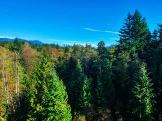 Photo 6: 30255 BRACKLEY Avenue in Mission: Stave Falls Land for sale : MLS®# R2527114