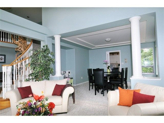 Photo 7: Photos: 20273 Menzies Road in Pitt Meadows: North Meadows House for sale : MLS®# V1102487