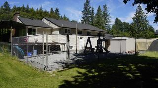 Photo 12: 10456 240 Street in Maple Ridge: Albion House for sale : MLS®# R2077054