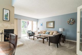 Photo 2: 531 SAN REMO Drive in Port Moody: North Shore Pt Moody House for sale : MLS®# R2090867