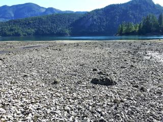 Photo 7: File#1406265 Plumper Harbour in : Isl Small Islands (North Island Area) Business for sale (Islands)  : MLS®# 875839