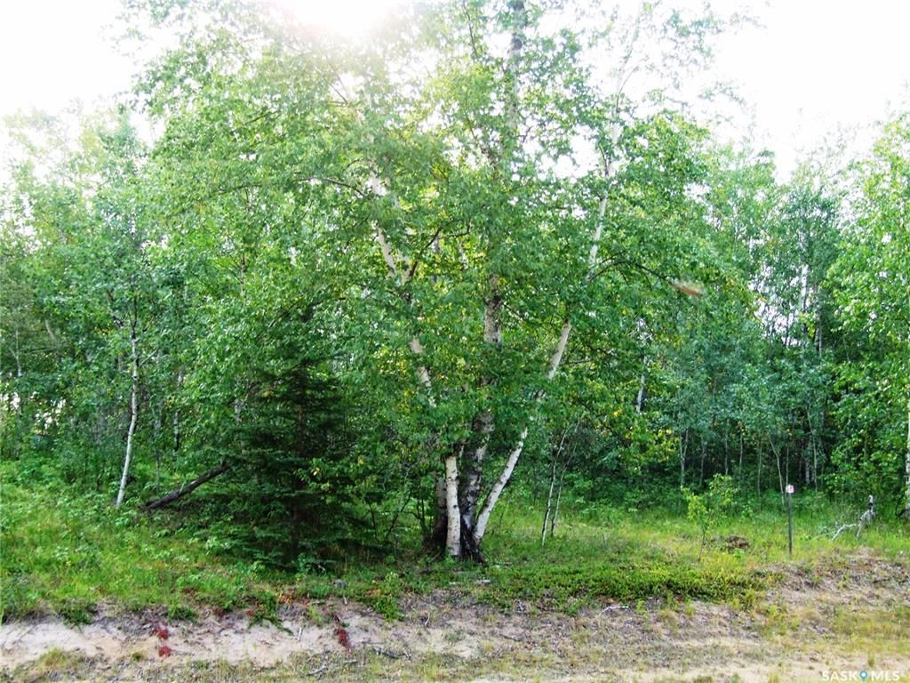 Main Photo: Lot 13 Sunset Cove in Big River: Lot/Land for sale : MLS®# SK859565