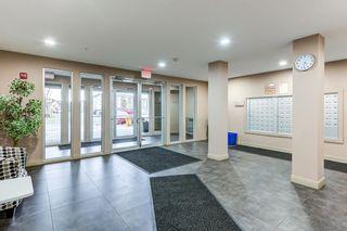 Photo 25: 420 274 MCCONACHIE Drive in Edmonton: Zone 03 Condo for sale : MLS®# E4253826