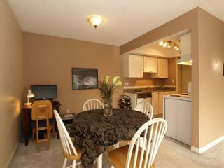 Photo 5: # 304 1515 Chesterfield Avenue in N. Vancouver: Central Lonsdale Condo for sale ()  : MLS®# V803278