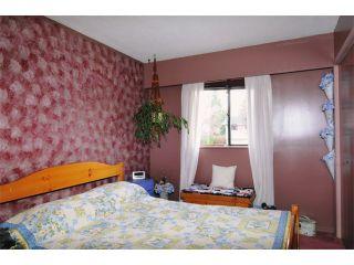 Photo 7: 21741 HOWISON AV in Maple Ridge: West Central House for sale : MLS®# V942196