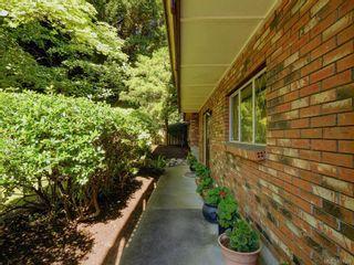 Photo 21: 1810 Grandview Dr in : SE Gordon Head House for sale (Saanich East)  : MLS®# 851006