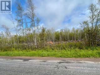 Photo 5: Lot Route 960 in Upper Cape: Vacant Land for sale : MLS®# M135281