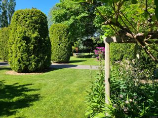Photo 33: 6651 WELCH Rd in : CS Island View House for sale (Central Saanich)  : MLS®# 885560