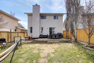 Photo 41: 64 Millrise Close SW in Calgary: Millrise Detached for sale : MLS®# A1099689