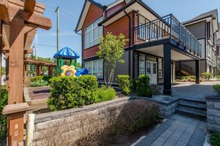 """Photo 37: 8 6378 142 Street in Surrey: Sullivan Station Townhouse for sale in """"Kendra"""" : MLS®# R2193744"""