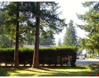 Photo 8: 4142 207A Street in Langley: Brookswood Langley House for sale : MLS®# F2622256
