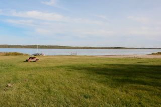 Photo 39: 5126 Shedden Drive: Rural Lac Ste. Anne County House for sale : MLS®# E4263575