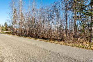 Photo 3: LT46 Leeming Rd in Campbell River: CR Campbell River South Land for sale : MLS®# 867161
