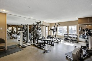 Photo 18: 540 10 Discovery Ridge Close SW in Calgary: Discovery Ridge Apartment for sale : MLS®# A1125806