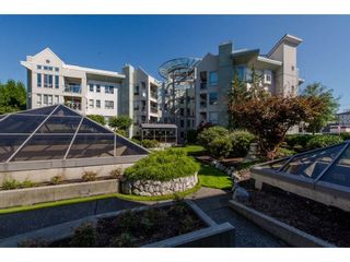 """Photo 1: 105 2585 WARE Street in Abbotsford: Central Abbotsford Condo for sale in """"The Maples"""" : MLS®# R2299641"""