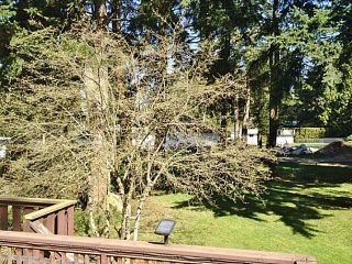 Photo 16: 14027 24 Avenue in Surrey: Sunnyside Park Surrey House for sale (South Surrey White Rock)  : MLS®# F1409041