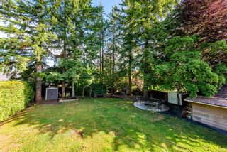 Photo 7: 4974 Adrian Rd in : CV Courtenay North House for sale (Comox Valley)  : MLS®# 877838