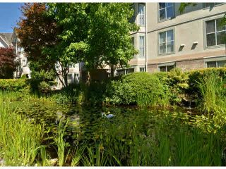 """Photo 18: 217 7161 121ST Street in Surrey: West Newton Condo for sale in """"The Highlands"""" : MLS®# F1418736"""