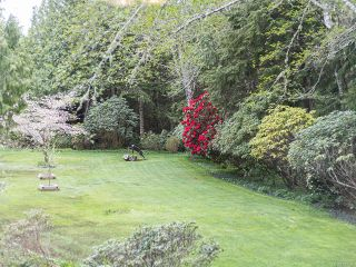 Photo 28: 1230 Pacific Rim Hwy in TOFINO: PA Tofino House for sale (Port Alberni)  : MLS®# 837426
