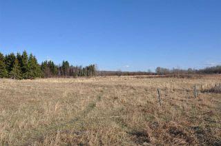 Photo 33: 10 57126 Range Road 12: Rural Barrhead County Rural Land/Vacant Lot for sale : MLS®# E4241768
