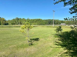 Photo 19: 31140 86N Road in Libau: R02 Residential for sale : MLS®# 202023270