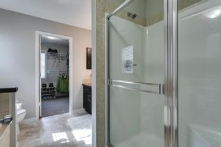 Photo 29: 31 BRIGHTONCREST Common SE in Calgary: New Brighton Detached for sale : MLS®# A1102901