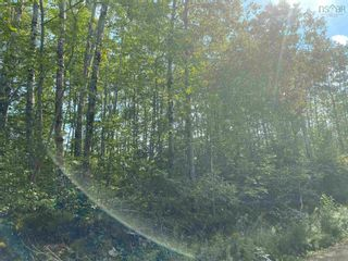 Photo 4: Lot Manse Road in Kenzieville: 108-Rural Pictou County Vacant Land for sale (Northern Region)  : MLS®# 202122852