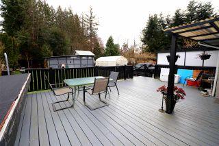 Photo 9: 12374 DAVISON Street in Maple Ridge: West Central House for sale : MLS®# R2555815